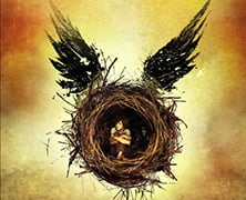Harry Potter está de volta!